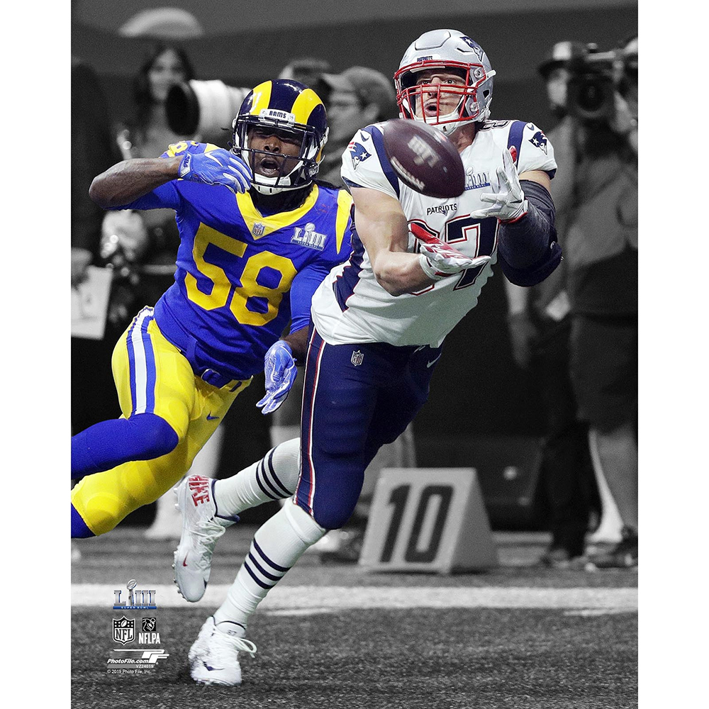 Rob Gronkowski Diving Catch 8x10 Carded Photo