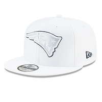 New Era 2019 Platinum On Field 9Fifty Snap Back Cap