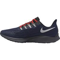 Nikeairpegasus2