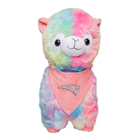 Team Logo Rainbow Llama